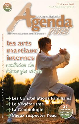 Les arts martiaux internes, maîtrise de l'énergie vitale